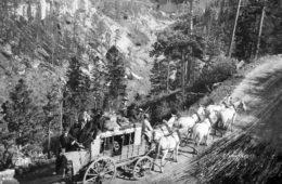 Deadwood Trail Buggy